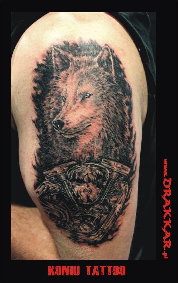 tatuaż wilk, Gliwicach