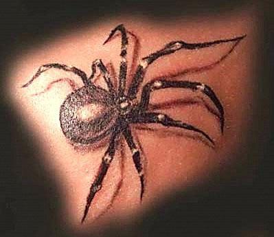 motyw małego pająka, studio Drakkar