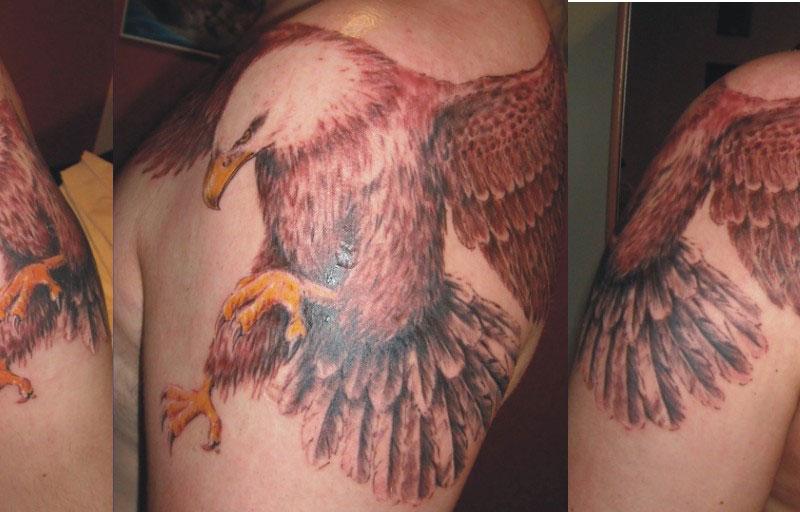 studio tatuażu - motyw orła