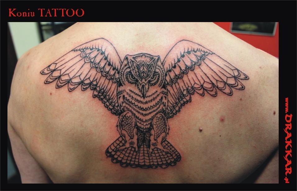 tatuaż z motywem sowy, studio Drakkar