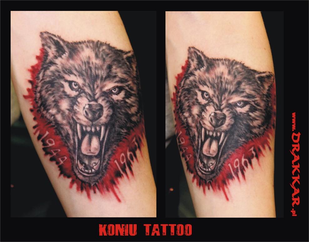 wilk - tatuaż zrobiony w studio tatuażu na Śląsku